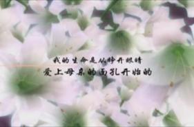 002-样盘高清视频(片花001)